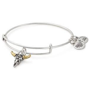 🇺🇸Alex and Ani Spirited Skull Charm Bracelet